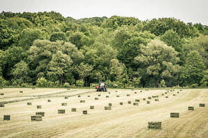 Hay For Sale - Uxbridge, Oshawa, Durham, New Market, Lindsay