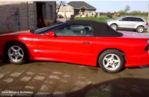 1995 Red Convertible Trans Am