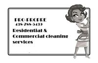 Services ménagers à domicile - RIVE SUD-home cleaning services