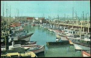 c-1947-SAN-FRANCISCO-CA-FISHERMANS-WHARF-BOATS-IN-HARBOR-VIEW-POSTCARD