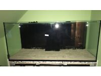 """5ft marine tank 60x24x26"""" high front optiwhite used for 3 months basically new"""