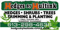 Hedges, Trees, Shrubs Trimming and Planting, Lawn and Bed Repair