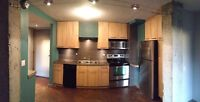 1 Bdrm LOFTSTYLE Condo for rent
