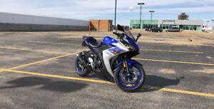 Yamaha R3 2015 - Team Yamaha Blue/Matte Silver
