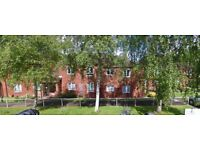 1 bedroom over 55's flat available to let