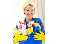 Part Time cleaner needed for house cleans