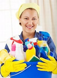 Domestic cleaner service
