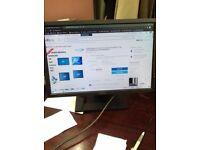 DELL PC Monitor (READ DESCRIPTION)