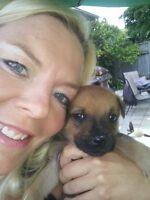 Puppy/Dog Care in my Oakridge Home