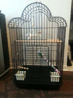 BIG HEAVY DUTY PARROT CAGE WITH ACCESSORIES