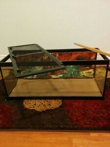 20 Gallon Reptile Tank with Accessories