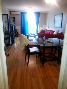 beautiful large renovated 2 bedroom condo
