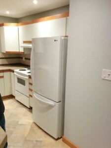 South Side  2 bedroom Recently Renovated Condo for rent
