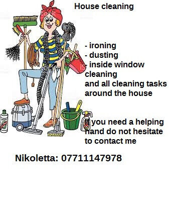 House/domestic cleaning