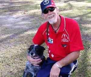 Aussie Pooch Mobile Dog Wash Logan Central Logan Area Preview