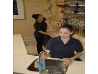 ExtremelyDetailed,SpotlessCleaning,Reliable,Domestic Cleaner,End of Tenancy Cleaning,Cleaning Lady