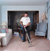 Carpet Cleaner / Upholstery Cleaning Technician