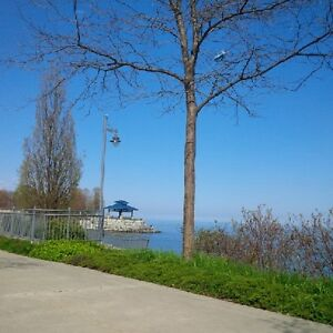 Main Flr 1Bedrm Minutes to Lakeshore,Restaurants in Port Credit