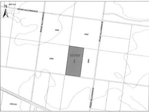 81 Acre Lot in NW Ontario Near Fort Frances Land Acreage Hwy 11