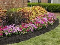 Spring Clean-ups, Projects, or Regular Maintenance!