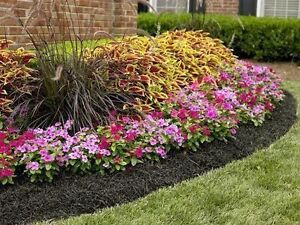 Spring Clean-Up! Affordable Landscaping Services!