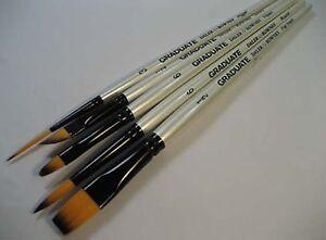 Daler Graduate Brush Set Round, Flat Wash, Rigger, Angled, Filbert - Watercolour