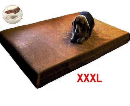 Xxxl Dog Bed Ebay