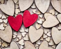 Free relationship workshop - earn $50!!!