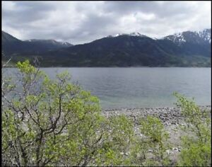 Bennet Lake -Lakefront Recreational Lot  - Rare.