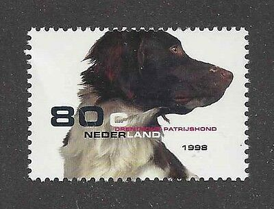 Dog Photo Portrait Postage Stamp DRENTSE DRENTSCHE PATRIJSHOND Netherlands MNH