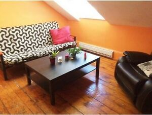 Downtown Summer Sublet near Metro
