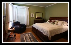 Live in a very comfortable two bedroom apartment-a home! St. John's Newfoundland image 3