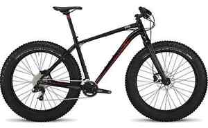 2015 FATBOY EXPERT SPECIALIZED