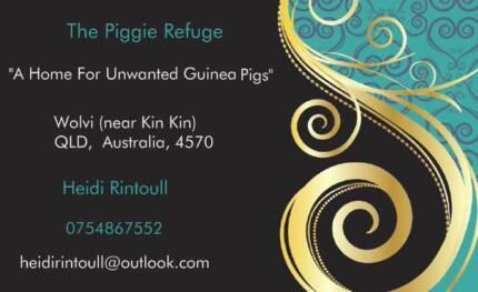 The Piggie Refuge Wolvi Gympie Area Preview