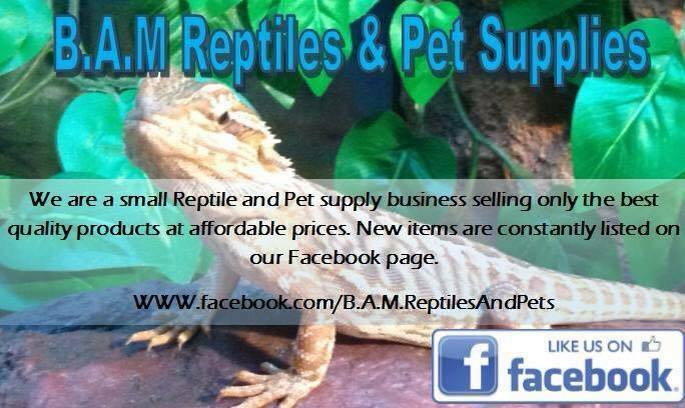 B.A.M_Reptiles_and_Pet_Supplies