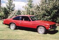 1975 nova SS custom