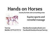 Equine sports massage