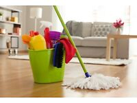 A RELIABLE DOMESTIC CLEANING