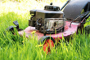 Looking to buy your old/broken lawn mowers, trimmers etc