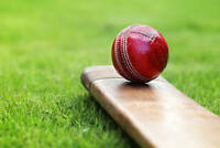 cricket players needed to play in Milton