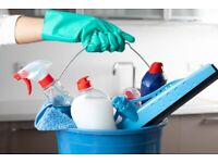 Cleaner - House & Domestic