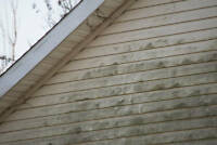 Need your Siding, Soffit or Fascia replaced?