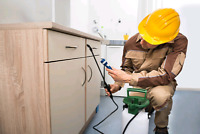 PEST EXTERMINATION SERVICES & ALL REMOVAL  FREE ESTIMATE