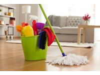 Domestic cleaner high quality services