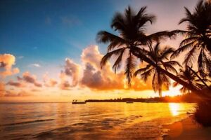 Amazing tropical timeshare for sale