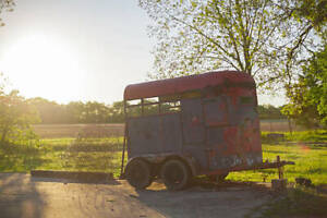 Horse Trailer, old and junky!