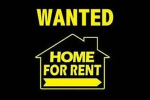 Couple looking for a family home for rent