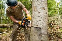J & J Tree Services