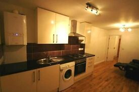 Modern & New one Bedroom Flat available for rent