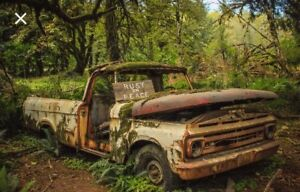 Looking for old vehicles in the woods!!